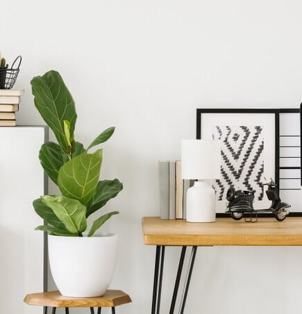 How to Create The Perfect Home Office Space?